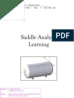 Saddle Analysis