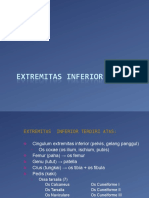 Musculoskeletal(Extr Inf)