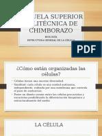 UNIDAD 3 Estructura General de La Célula