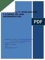 Informe WORD Organizaciones Modificado