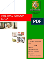 Analisis de Los E.F de Austral Group