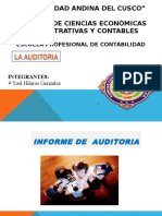Informe Largo de Auditoria