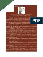 Ficha de Preparação Para Teste