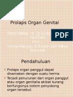 Prolaps Organ Genital Henny Fidhy
