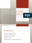 Clase 1 sistema nervioso 1.pdf