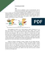 Pancreas - Embriologie Si Anatomie