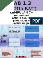 BAB 1.3  (DERIA BAU)