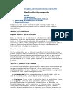Clasificación Del Presupuesto Trabajo COMPLETO