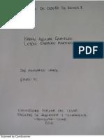 Trabajo Aducciones y Desarenador 2014