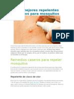 Los Mejores Repelentes Caseros Para Mosquitos