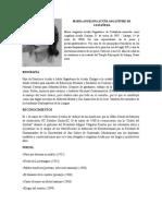 Escritoras y Periodistas Guatemaltecas Prepa