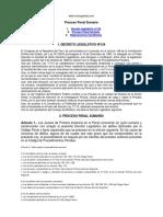 Proceso Penal Sumario - Monografias