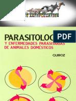 Parasitologia y Enfermedades Parasitarias de Animales Domesticos