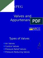 Valves and Appurtenance s