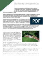 Aménagement paysager essentiel pour les personnes sans pouce vert