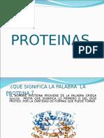2.1 y 2.2.-Proteínas y Aminoacidos