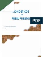 pronosticos-y-presupuestos-dario-flota11.pdf