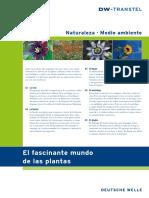 El Fascinante Mundo de Las Plantas