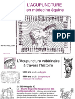 Acupuntura História e Princípios Francês
