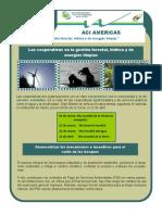 2011 BVC 05 (Gestión Hídrica, Forestal, Energías)