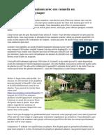 Améliorer votre maison avec ces conseils en aménagement paysager
