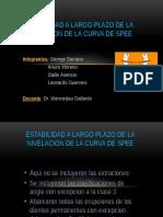 Estabilidad de la Curva de Spee.pptx