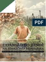 Produção de Dendê - Reporter Brasil