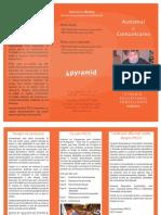 Pecs Flyer Romanian 2012
