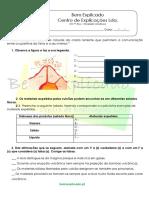 B 4.1 Ficha de Trabalho Atividade Vulcânica 3