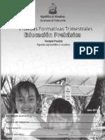Pruebas Formativas III Trimestrales Prebasica