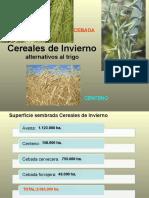 Otros Cereales Invierno