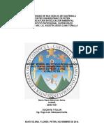 Informe de Servicios de Auxiliatura y Practica de Ejercicio Profesional Supervisado
