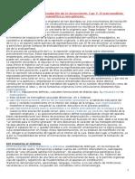 Bleichmar Fundacion de Lo Icc-cap7