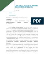 Recurso de Nulidad y Accion de Amparo Cautelar Presentados Ante El Tsj