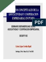 asociatividad chilena.pdf