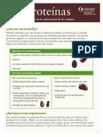 Dieta Proteinas Riñones