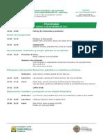 Programa Simposium 2013
