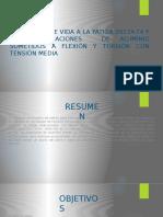 expo DISEÑO DE ELEMENTOS .pptx