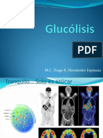 206_glucolisis