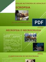 Necropsia o Necrocirugia-exposicion