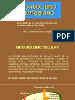 Metabolismo_class Micro Enfermeria