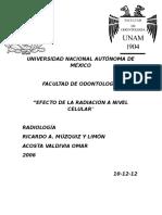 Radiología. Efectos de La Radiación a Nivel Celular...