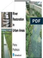 Urban river restoration
