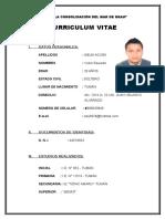 Curriculum Victor Mejia 2016