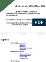 Projeto Luciano Talento Profissional 2014-02
