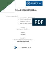 DESARROLLO ORGANIZACIONAL CUPRUM