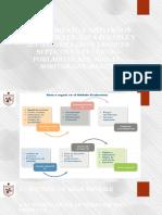 Evaluacion Del Proyecto de SORITOR (FORMULACION DE PROYECTOS9