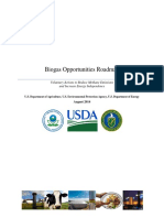 Biogas Roadmap