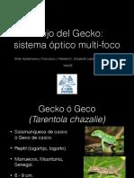Ojo del Gecko