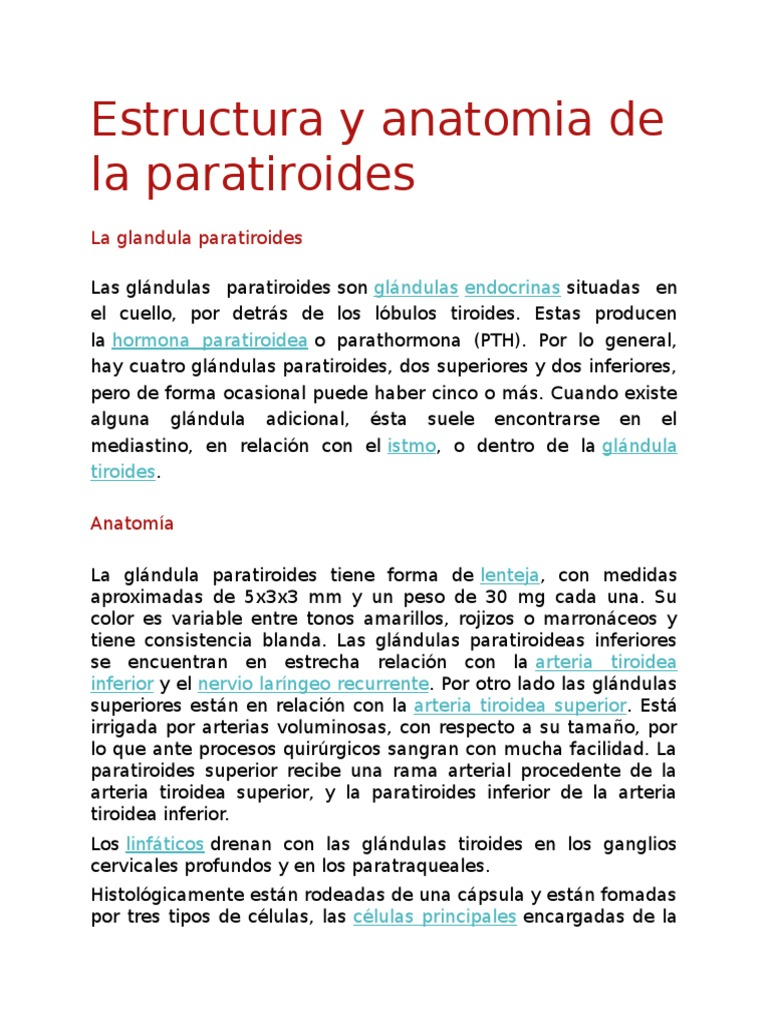 Lujoso Paratiroidea Tiroides Imágenes - Imágenes de Anatomía Humana ...